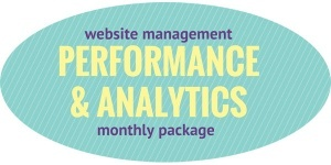 website performance and analytics package