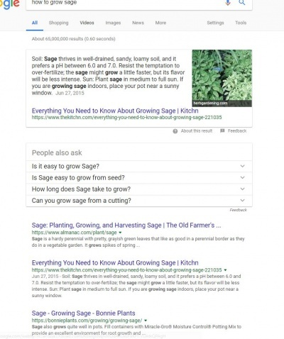 who to grow sage - google search results